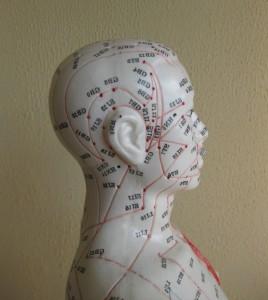 Praktijk Vogels  acupunctuur Nijmegen